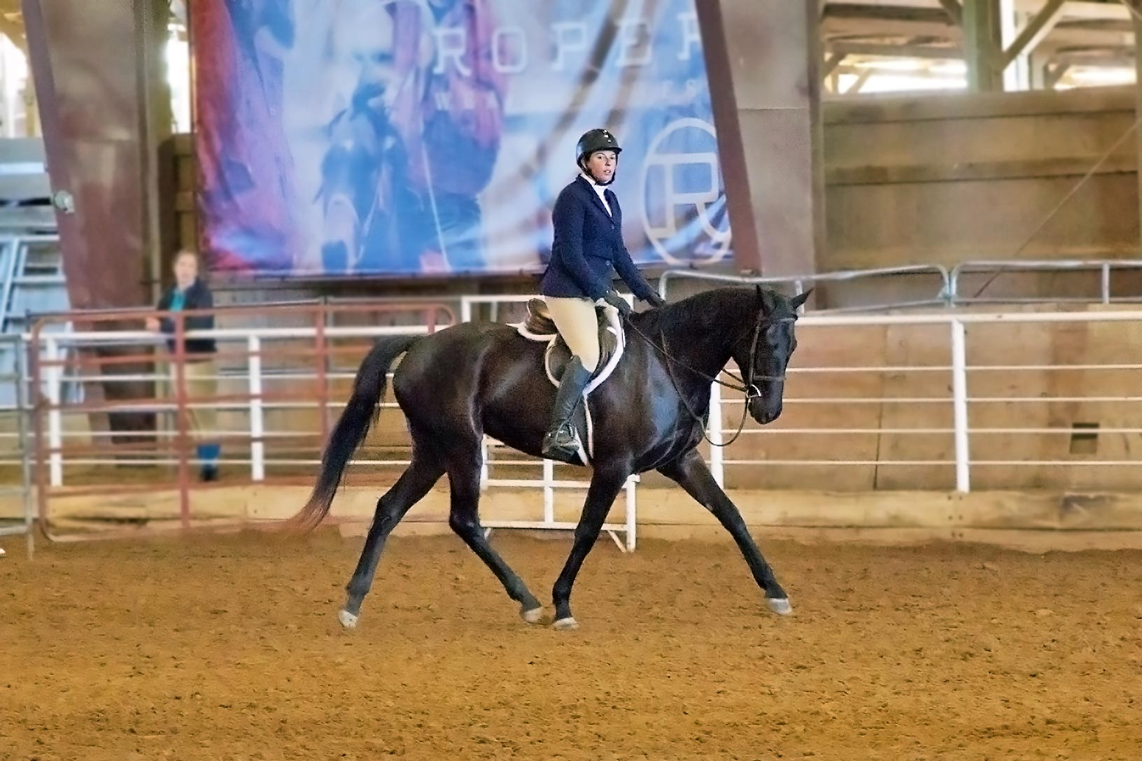 Haven at the Rose Palace competing in jump show 2017