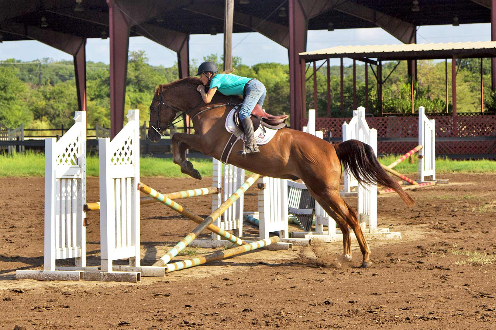 Sligo trained at the Russell Equestrian Center