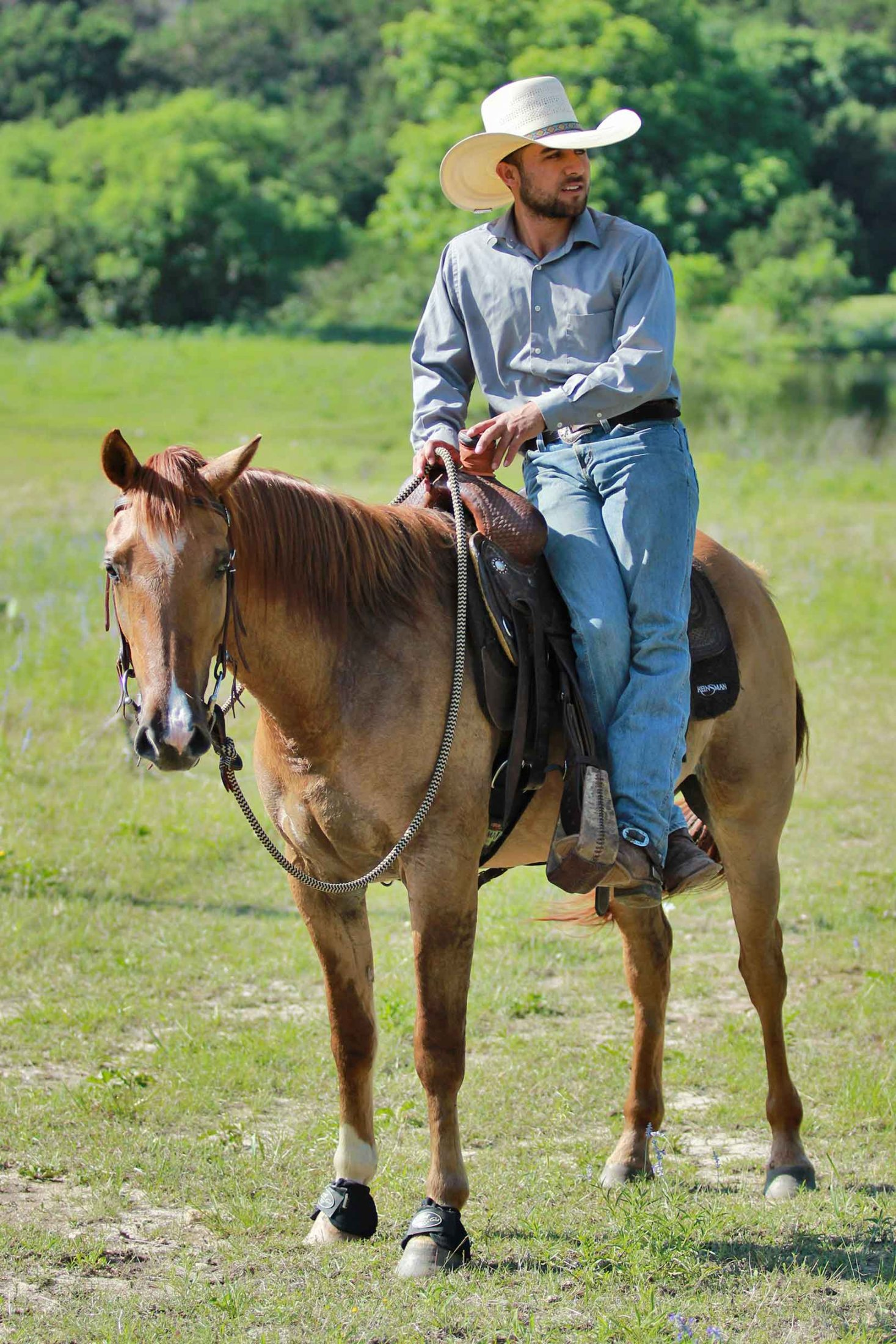 We are so incredibly lucky to have Reyes on our team. He trains under the natural horsemanship philosophy which makes for gentle horses
