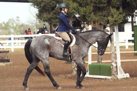 Ichiban during Equitation class